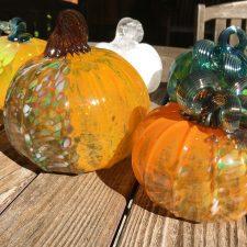 Pumpkin – Traditional Orange